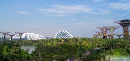 Flower Dome and Cloud Forest - Gardens by the Bay