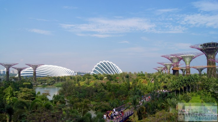 Flower Dome und Cloud Forest - Gardens by the Bay