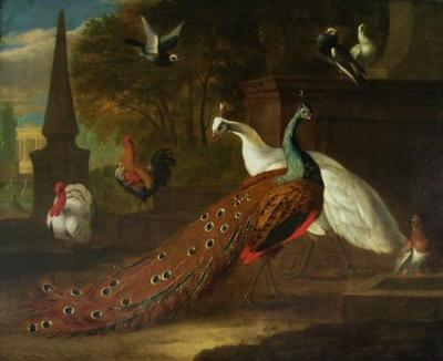 Peacocks and other fowl in a classical parkland