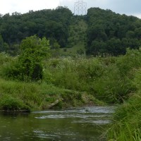 Mormon Creek