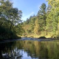 Morrison Creek