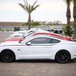 Mustang Mania