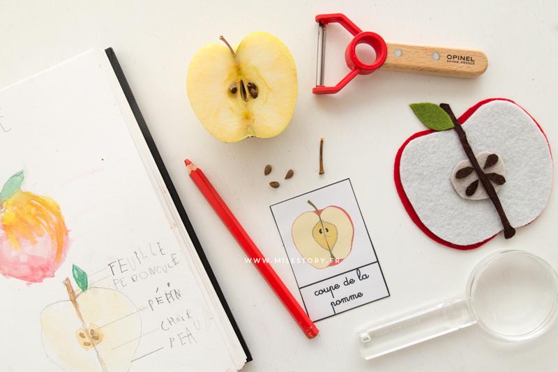 atelier ief maternelle coschooling livres et activites sur la pomme milestory