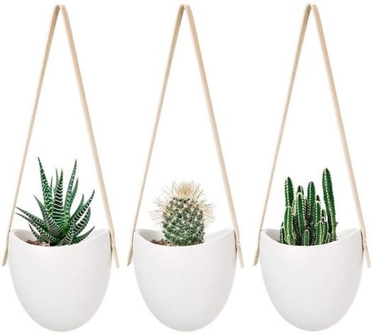 Macetas colgantes para decorar con suculentas