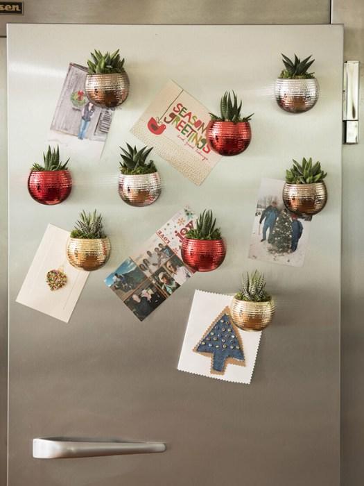 Maceteros magnéticos para suculentas en el frigorífico