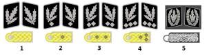 Генералы еаффен-СС