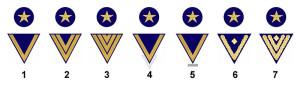 德国海军的团队服务等级