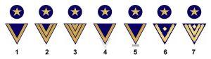 Mannschaftsdienstgrade der Marine