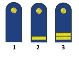 Grades d'équipe de la marine de peuple nationale des Allemands la république démocratique