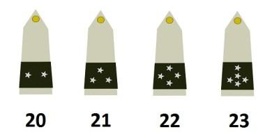 法国军队的将军