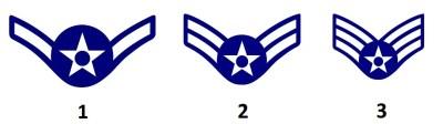 美国空军的团队服务等级