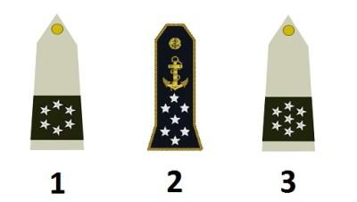 Sonderdienstgrade der französischen Armee