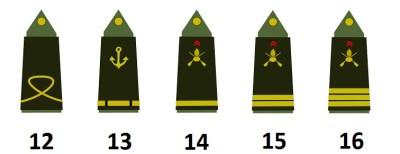 Subalternoffiziere der französischen Armee (Officiers subalternes)