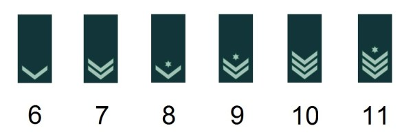 Israeli noncommissioned officer's ranks