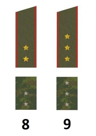 Russische Praporschtschikdienstgrade