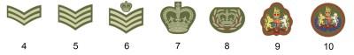 Ufficiali corporali dell'esercito britannico