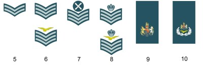Dienstgrade der englischen Royal Air Force