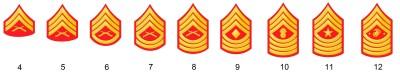 Unteroffiziersdienstgrade des US Marine Corps