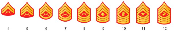 Noncommissioned officer's ranks of the US marine corps