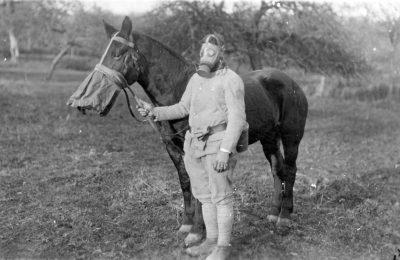 Солдат и лошадь снабжено с противогазом