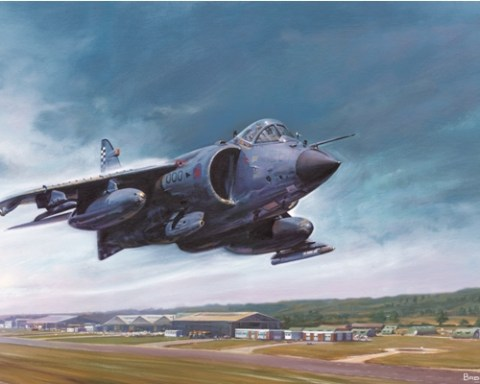 Sea Harrier over Dunsfold - Military Times - Mark Bromley