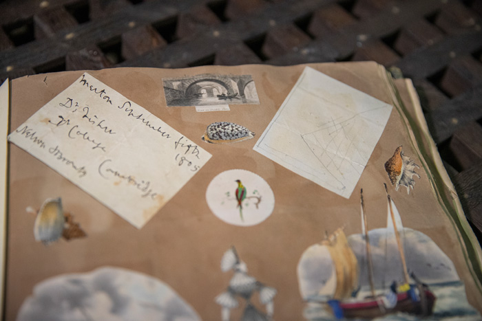 Nelson's Trafalgar sketch discovered in scrapbook
