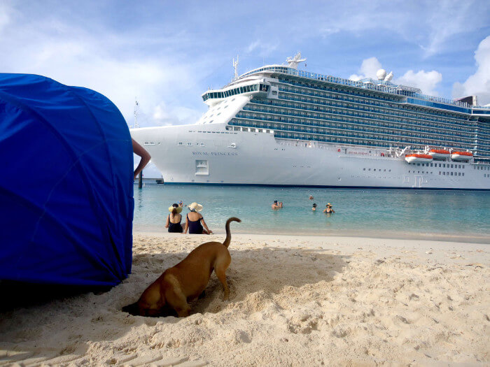 Dog Digs At Grand Turk Cruise the Caribbean with a Military and Veteran Discount