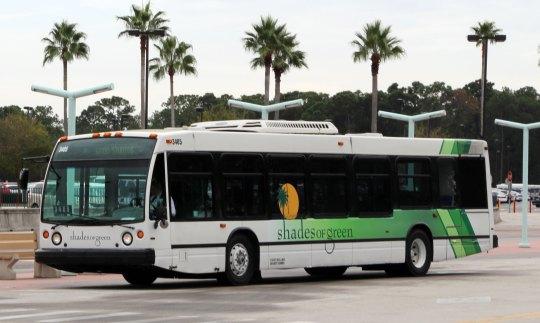 Shades-Bus