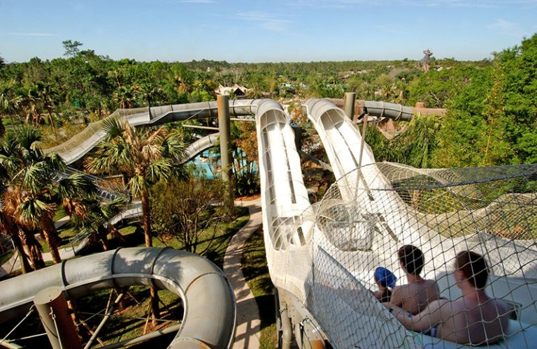Disney Armed Forces Salute Water Park Option