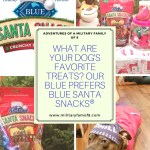 What are your Dog's and pets Favorite Treats? Our Blue Prefers BLUE Santa Snacks®