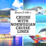 Reasons to take a cruise with Norwegian Cruise Lines