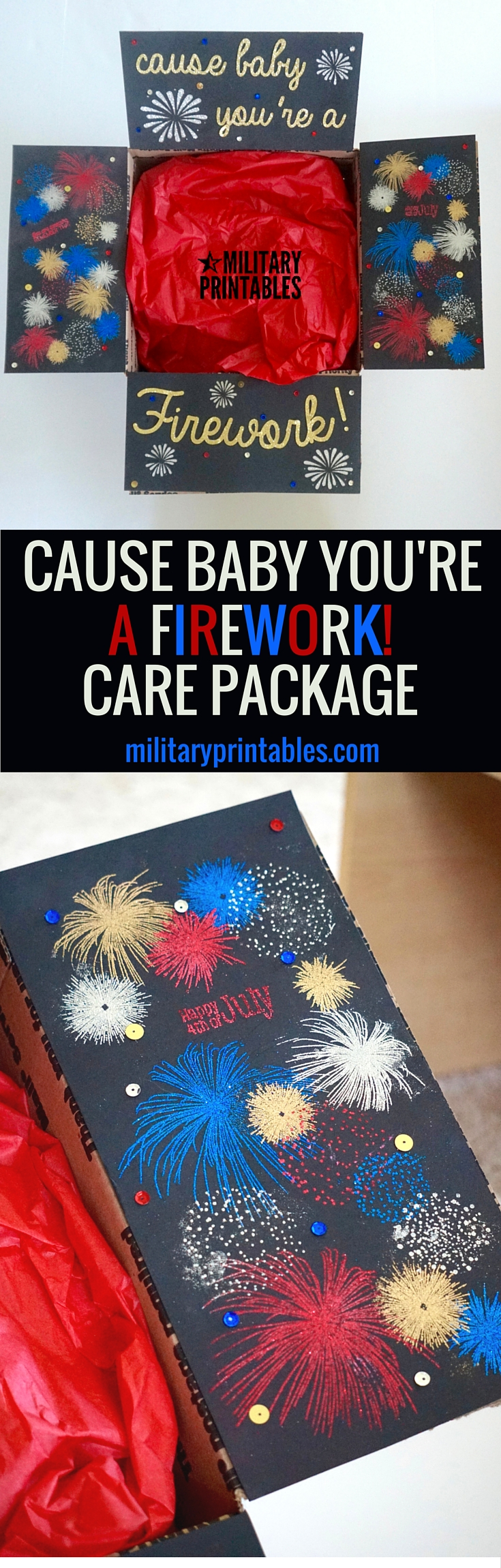 4th of July Cause baby you're a firework care package