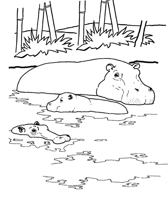 Hippo Coloring Pages Valentines