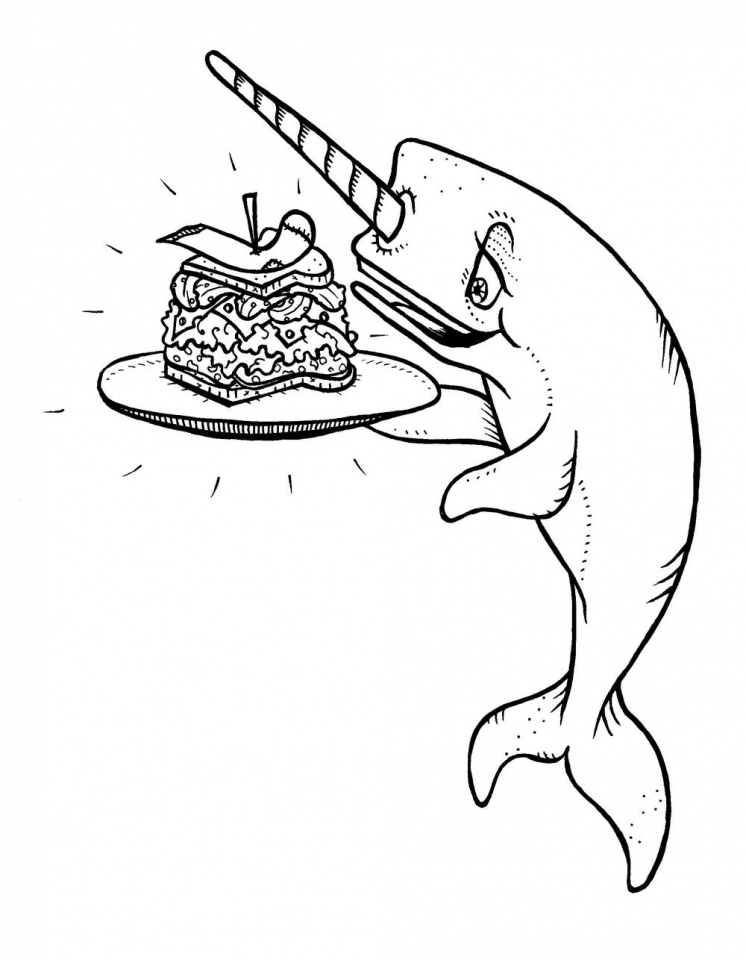 Narwhal Coloring Book