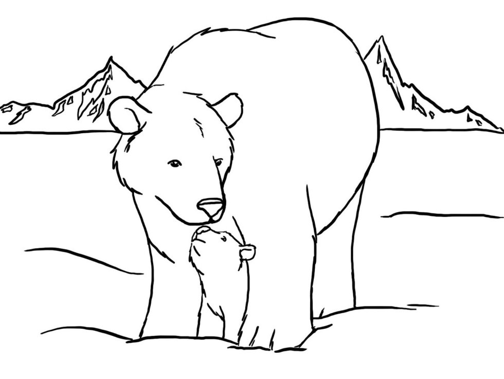 baby polar bear coloring pages