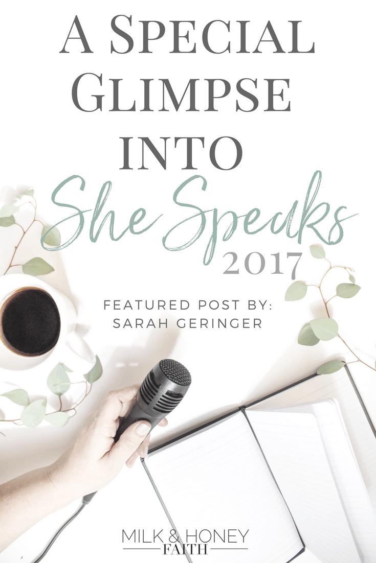 She Speaks Conference, Christian Bloggers, Salt and Light Linkup, Writers and publishers, Proverbs 31 Ministries, 2017