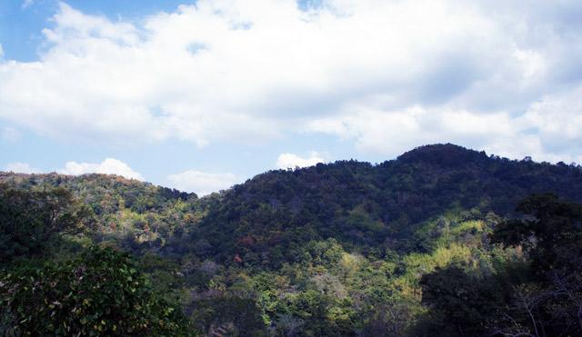 lan-sang-national-park-1