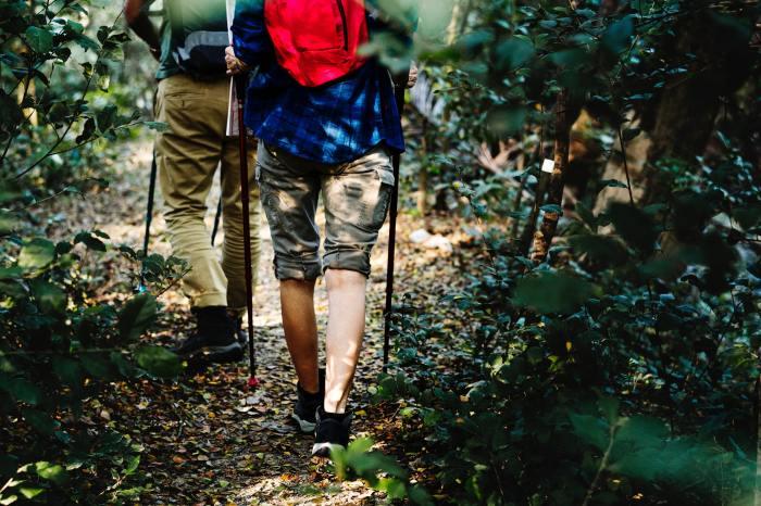 Image of two men hiking