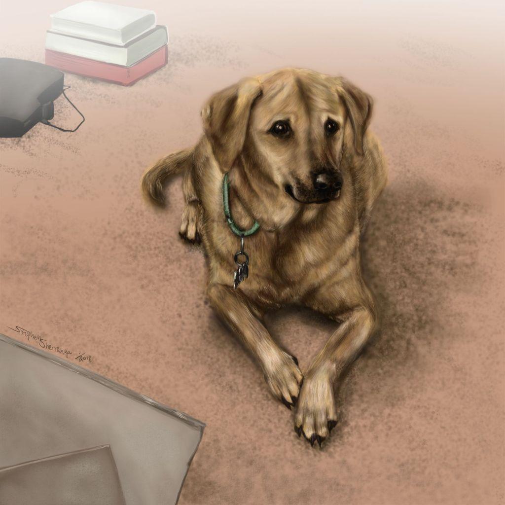 Digital painting of dog by Stephen Sherrange