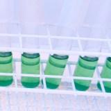 Er det farlig å jobbe med mikrober?