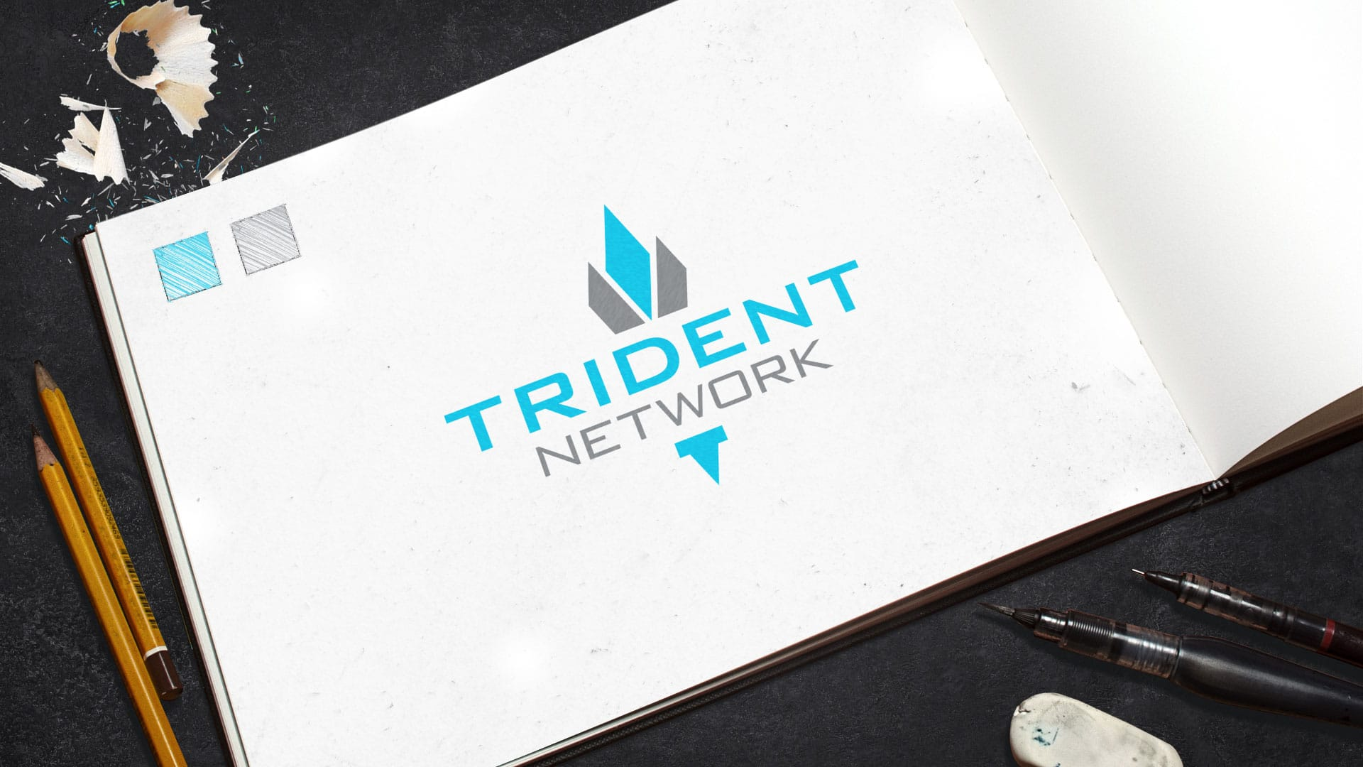 Logo Design: Trident Network