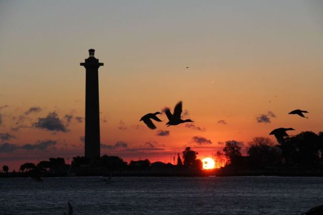 Put-in-Bay Harbor at sunrise with geese flying