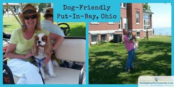 Dog Friendly Put-in-Bay, Ohio