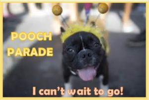 Pooch Parade for dogs in DeRivera Park, Put-in-Bay Ohio