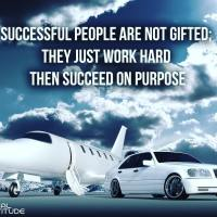 Successful people are not gifted; they just work hard then succeed on purpose.