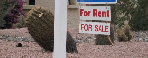 buy or rent