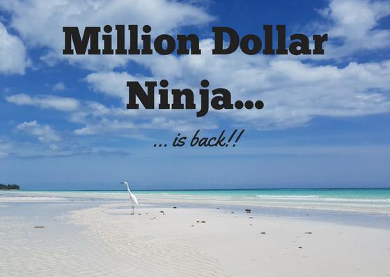 Million Dollar Ninja is back