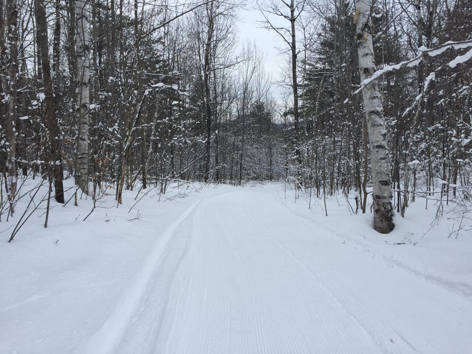 Scenic View Trail