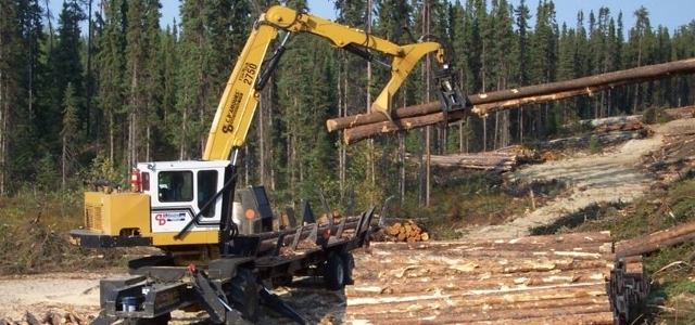 Forestry (640x300)