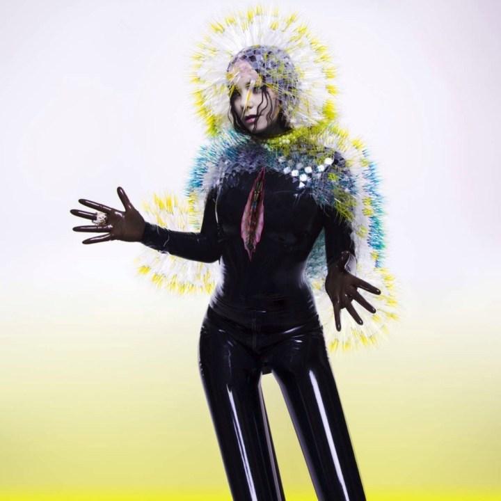 Björk-Stonemilker